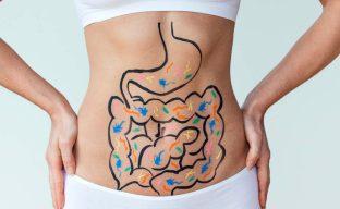 Healthy Digestive Track